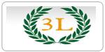 Logo Model 3l